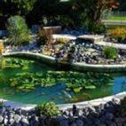 Costruire un laghetto in giardino: ecco la guida step by step